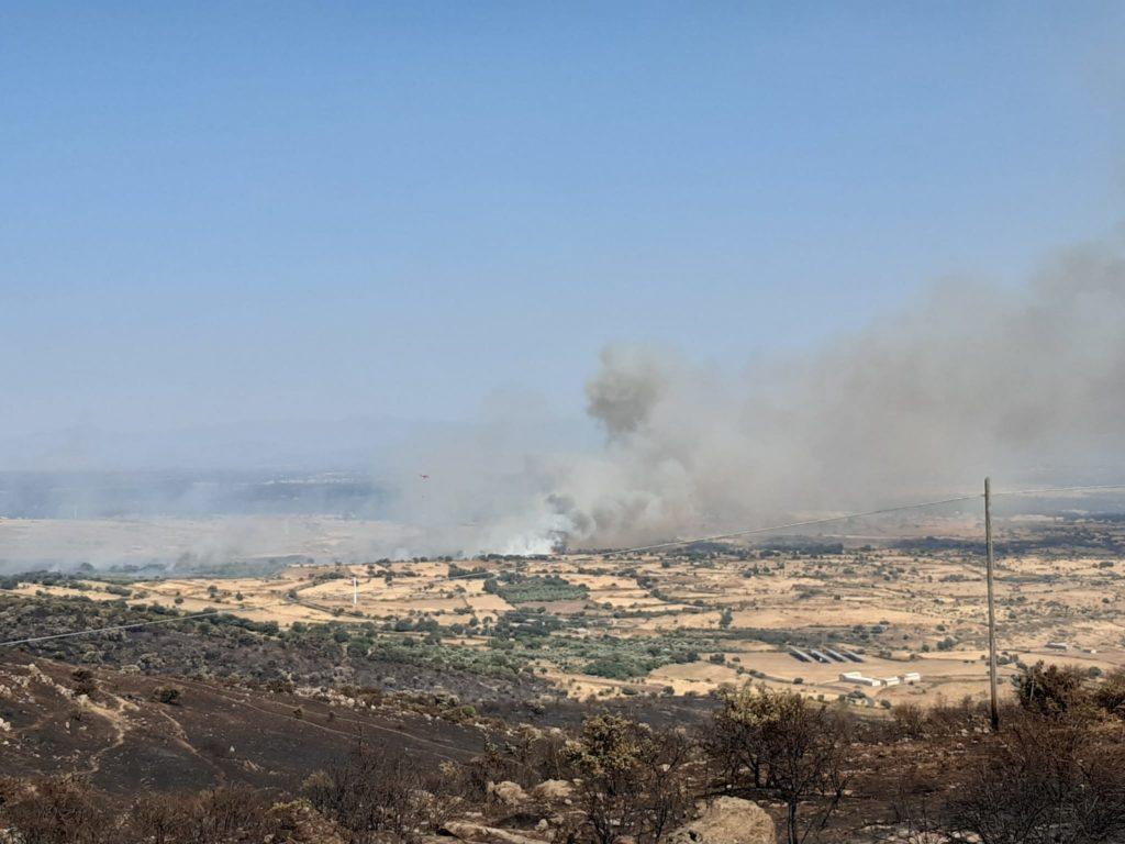 Emergenza incendi: gli esiti delle collette e delle donazioni